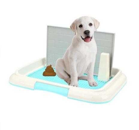 Toilette pour chien et chat